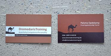 Logo Dromedaris Training