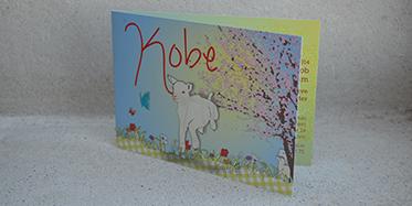 Geboortekaartje Kobe