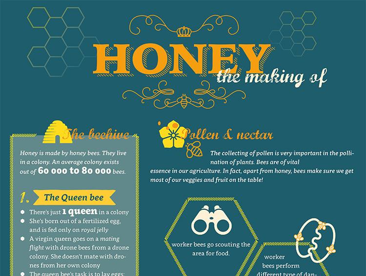 Infografiek Honing