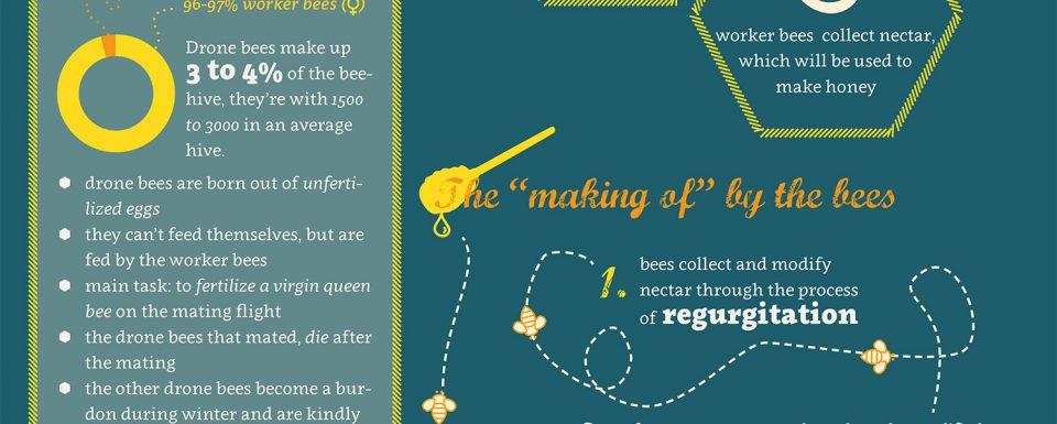 infographic_honey_galerij